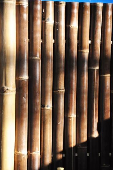 bambus sichtschutz f r den garten sicht oder windschutz f r die gartengestaltung z b im. Black Bedroom Furniture Sets. Home Design Ideas