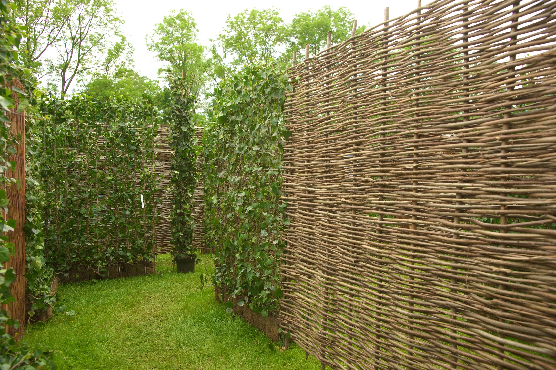 Sichtschutz Aus Haselnuss Geflochten 150 X 180 Cm Www Garten